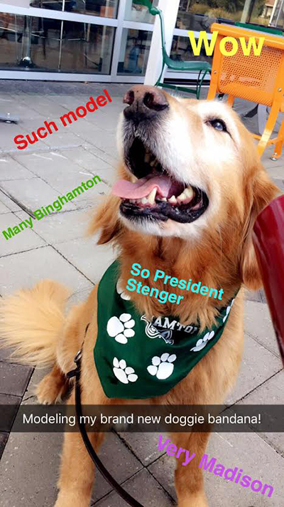 That time Binghamton's Snapchat blew up because of a dog - Blog
