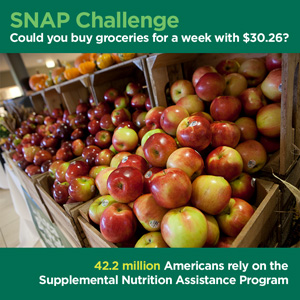 SNAP challenge, $30.26 for one week's groceries