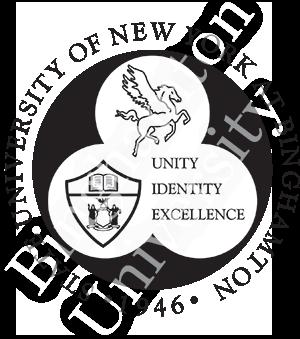 Image result for binghamton university logo