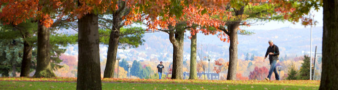 Students walking under trees during the fall months