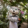 7 Things To Do On Binghamton University's Campus Over The Summer