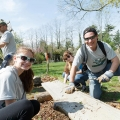 12 Ways You Can Give Back for Binghamton's Global Day of Service