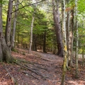 5 Gorgeous Nature Preserve Trails You Must Hike This Fall
