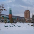 8 Ways to Enrich Your College Life at Binghamton