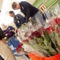 Valentine's Day in Binghamton: Fun Ideas for Friends and Couples Alike