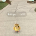 What Happened When I Tried Mastering Pokemon Go at Binghamton University