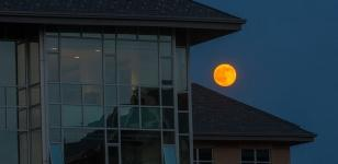 Newing College Full Moon