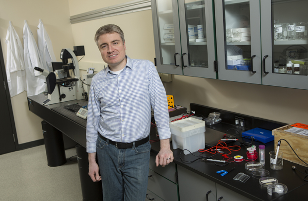 Engineer Paul Chiarot wins NSF grant