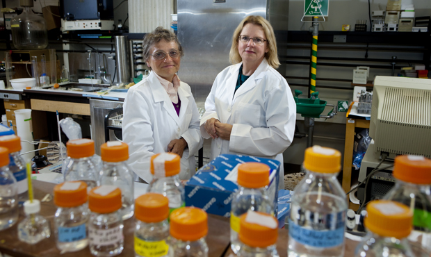 Biologist Susannah Gal, left, collaborates with chemist Susan Bane on research that may one day lead to personalized approaches to cancer treatment.