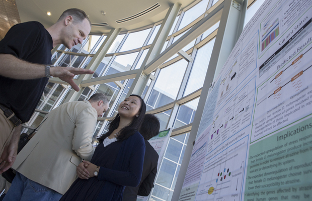 Associate professor of psychology Christopher Bishop, seen here discussing research with student Priscilla Li at the Howard Hughes Medical Institute poster session in July, will lead the neuroscience research stream of the Freshmen Research Immersion (FRI) program.