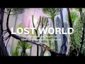 Video: World's oldest fossilized forest unearthed