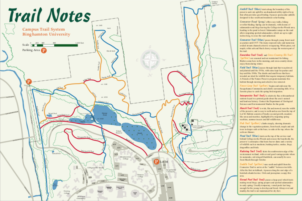 Binghamton University Map Maps/Brochure   Nature Preserve | Binghamton University Binghamton University Map
