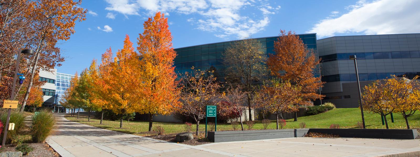 Binghamton Spring 2020 Calendar Spring Admitted Freshman   New Student Programs | Binghamton