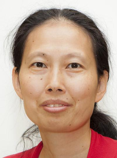 Assistant Professor Weiying Dai