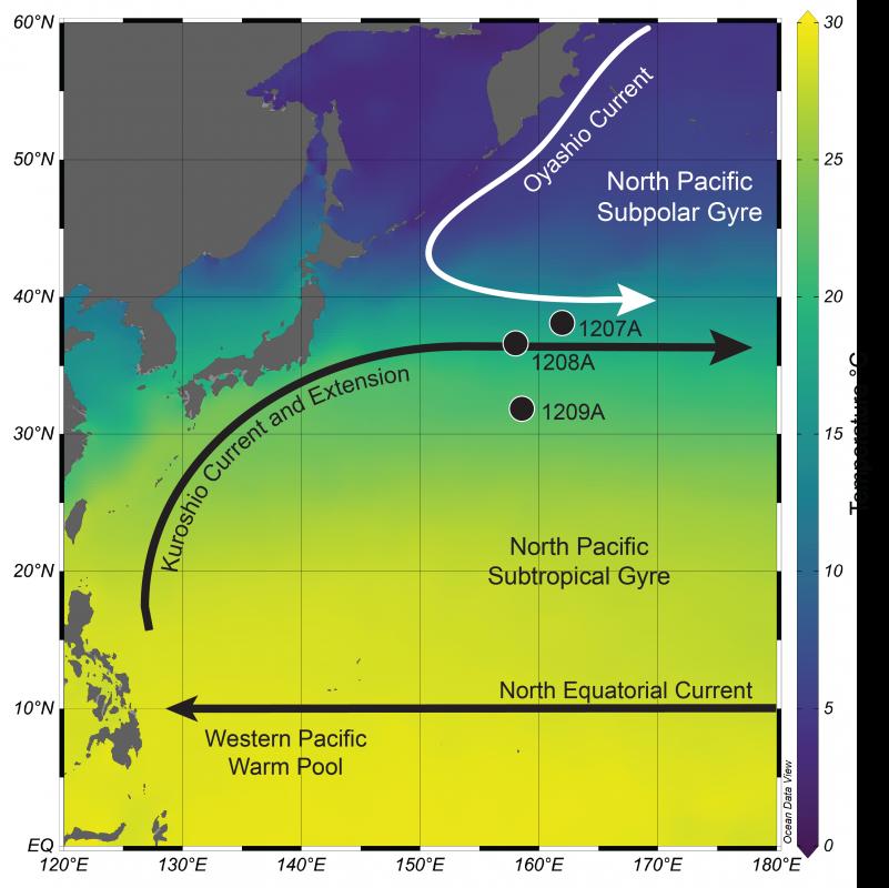 Carte moderne de la température de surface de la mer du nord-ouest de l'océan Pacifique.  Le courant et l'extension de Kuroshio sont représentés par la ligne et la flèche noires, tandis que le courant d'Oyashio est représenté par la ligne et la flèche blanches.  L'emplacement des trois carottes de sédiments (numérotées 1207, 1208 et 1209) utilisées dans l'étude, forées sur Shatsky Rise, sont indiqués par les cercles.