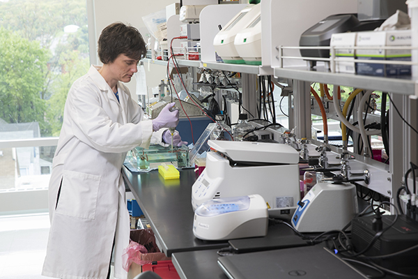 Aaron Beedle, associate professor of pharmaceutical sciences at Binghamton University, in her lab where she studies how to reduce disease and extend life span.