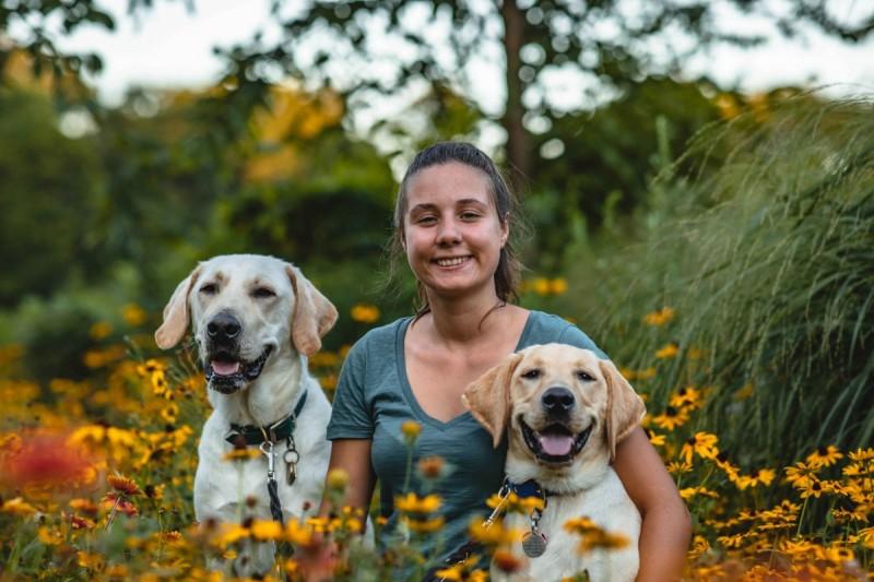 Biological sciences major Yfke Havinga and the yellow Labs she raised: Stan and Lancelot.