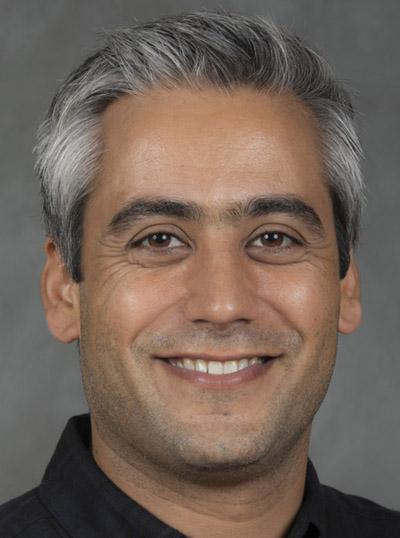 Assistant Professor Mir Jalil Razavi