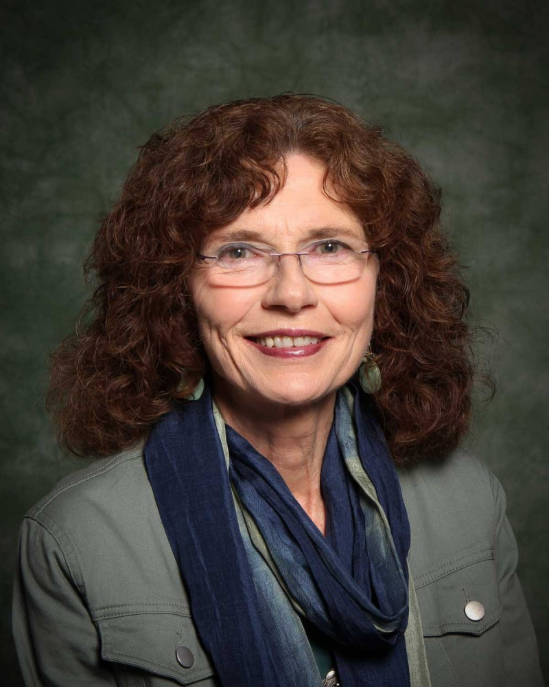 Jaimee Wriston Colbert, professor of English, General Literature and Rhetoric and recipient of the 2019 Chancellor's Award for Excellence in Scholarship and Creative Activities