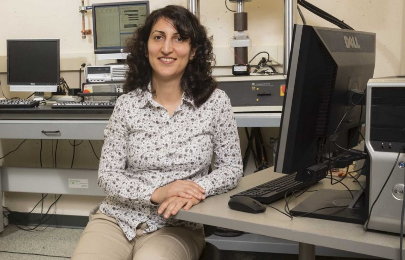 "Shahrzad ""Sherry"" Towfighian is an associate professor of mechanical engineering at Binghamton's Thomas J. Watson School of Engineering and Applied Science."