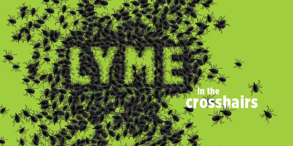 Enormous gaps remain in educating the public about Lyme disease. A center at Binghamton University is focusing on research and getting the word out.