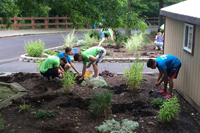 Students volunteer at Discovery Center.