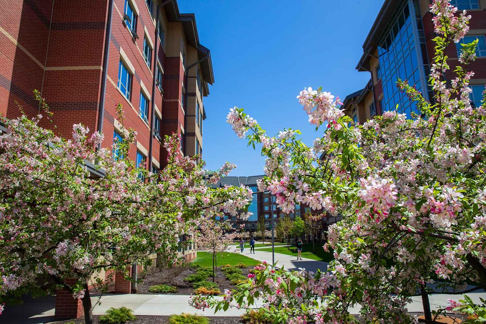 Residential Life | Binghamton University